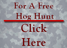 50% Off - Offer Valid on Any Hog Hunt